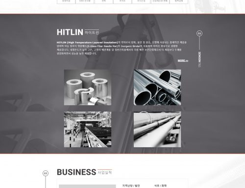 Web site design_hitlin