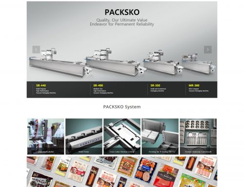Web site design_packsko